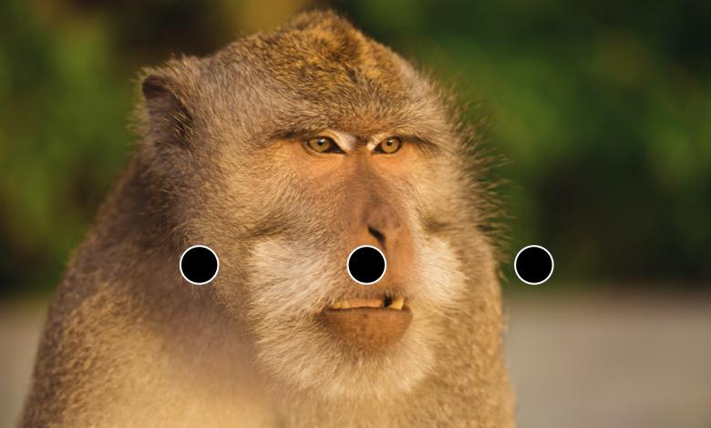 賢者タイムのイメージ画像